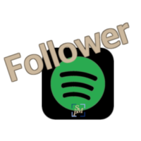 spotify follower